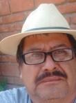 Gonzalo, 59  , Santiago Teyahualco