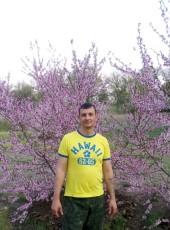 Pavel, 37, Russia, Volgograd