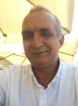 TURAN, 39  , Ankara