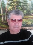 Viktor, 71  , Kasimov