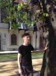 alexandru, 21  , Baia Mare (Maramures)