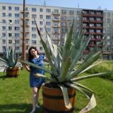 Nataliia, 30  , Walbrzych
