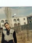 Argam, 40  , Tashir