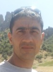 mukhidin, 34  , Korablino