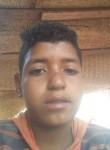 سيف, 44  , Aswan