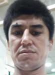 Zafarbek , 36  , Tashkent