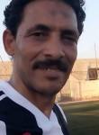Hakem Hlaf, 52  , Cairo