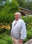 Viktor, 71, Moscow