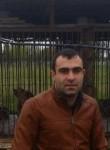 Vard, 38, Byureghavan