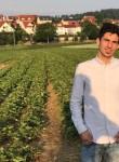 Hama prince, 24  , Weinheim