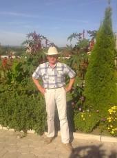Георгий, 71, Россия, Воронеж
