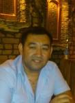 Sher, 39  , Sertolovo