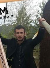 Teymur, 31, Azerbaijan, Baku