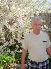Viktor, 62, Russia, Kolomna