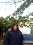 Vasiliy, 32, Rtishchevo