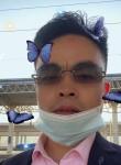 王俊凯, 40  , Hefei