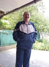 Serzhik, 55, Ukraine, Novoselytsya