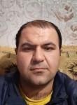Shiraz, 31  , Mykolayiv