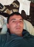 Bekbek, 31  , Hamza