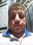 احمد الجوهري, 41  , Cairo