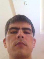 zakir, 34, Uzbekistan, Tashkent