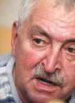 Kostya, 71  , Tolyatti
