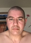 oliv, 45  , Ploufragan