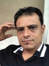 Ali , 40, Italy, Milano