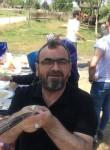 Acronal , 53, Gebze