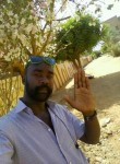 حازم, 29  , Omdurman