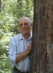 Vladimir, 75  , Gurevsk (Kemerovskaya obl.)