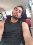Sajad, 28  , Shiraz
