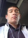 Alinur, 32  , Bishkek