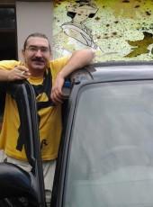 Canis lupus, 49, Georgia, Batumi