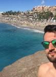 orgesr, 24  , Verona