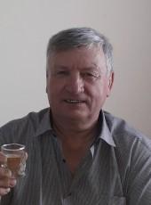 viktor, 69, Russia, Kamyshin