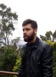 Ricardo, 29  , Lima