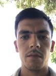 bobur, 24  , Tuytepa