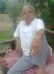 الخريف, 33  , Sarpol-e Zahab