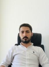 Ali, 28, Turkey, Istanbul