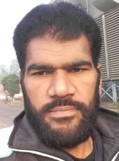 M Sarwar Ansar, 39, Pakistan, Lahore
