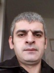 Lazar , 43  , Holon
