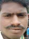 Basnt, 18  , Lucknow