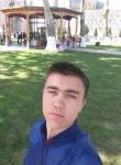 Velikiy Tigr, 25  , Tashkent