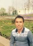 tawkentd378