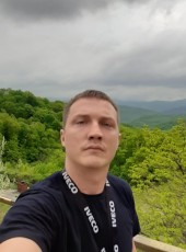 Denis, 31, Russia, Voronezh