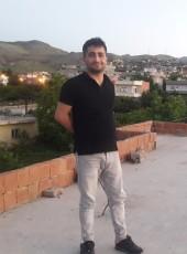 Yiğit, 28, Turkey, Hakkari