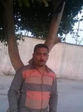 محمد نجيب, 40, Egypt, Cairo