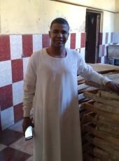 ميدو, 40, Egypt, Kawm Umbu