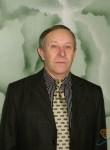 Viktor, 65  , Sinelnikove
